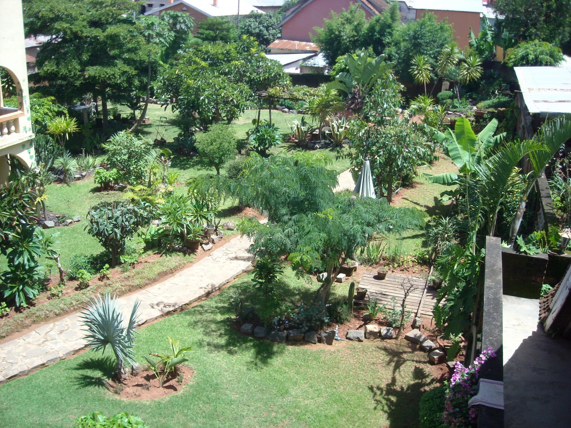 Salon de jardin baobab for Baobab jardin